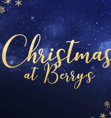 Shop The Berry's Jewellery Christmas Gift Guide For Her