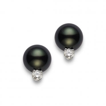 18ct White Gold Black South Sea Cultured Pearl Stud Earrings